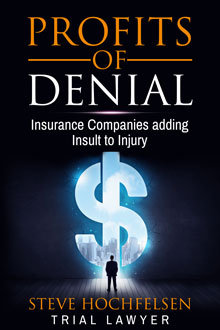 Profits of Denial by Steve Hochfelsen